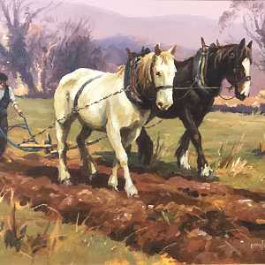 Horse Ploughing in Co Antrim