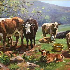 Cattle in the glens