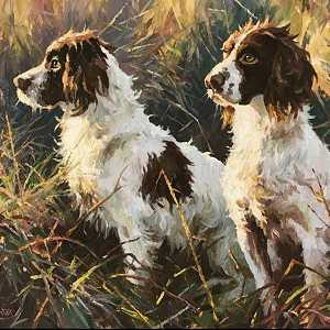 The Two Springers