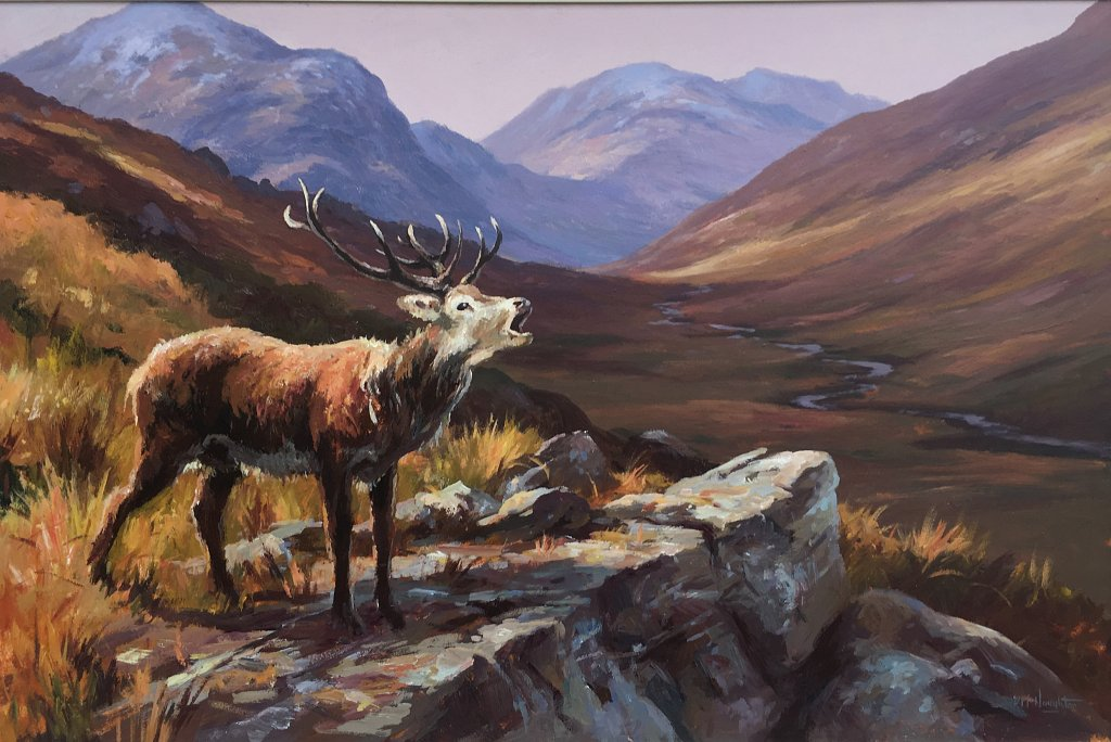 The Stag (Donegal )